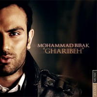Mohamad Bibak