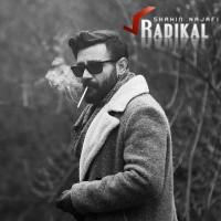 Shahin Najafi - Radikal