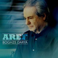 Aref-Boghze-Darya1