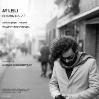 shahin najafi- ayleili - cover